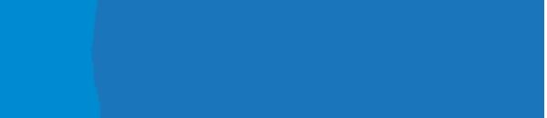 Blue Biz Council